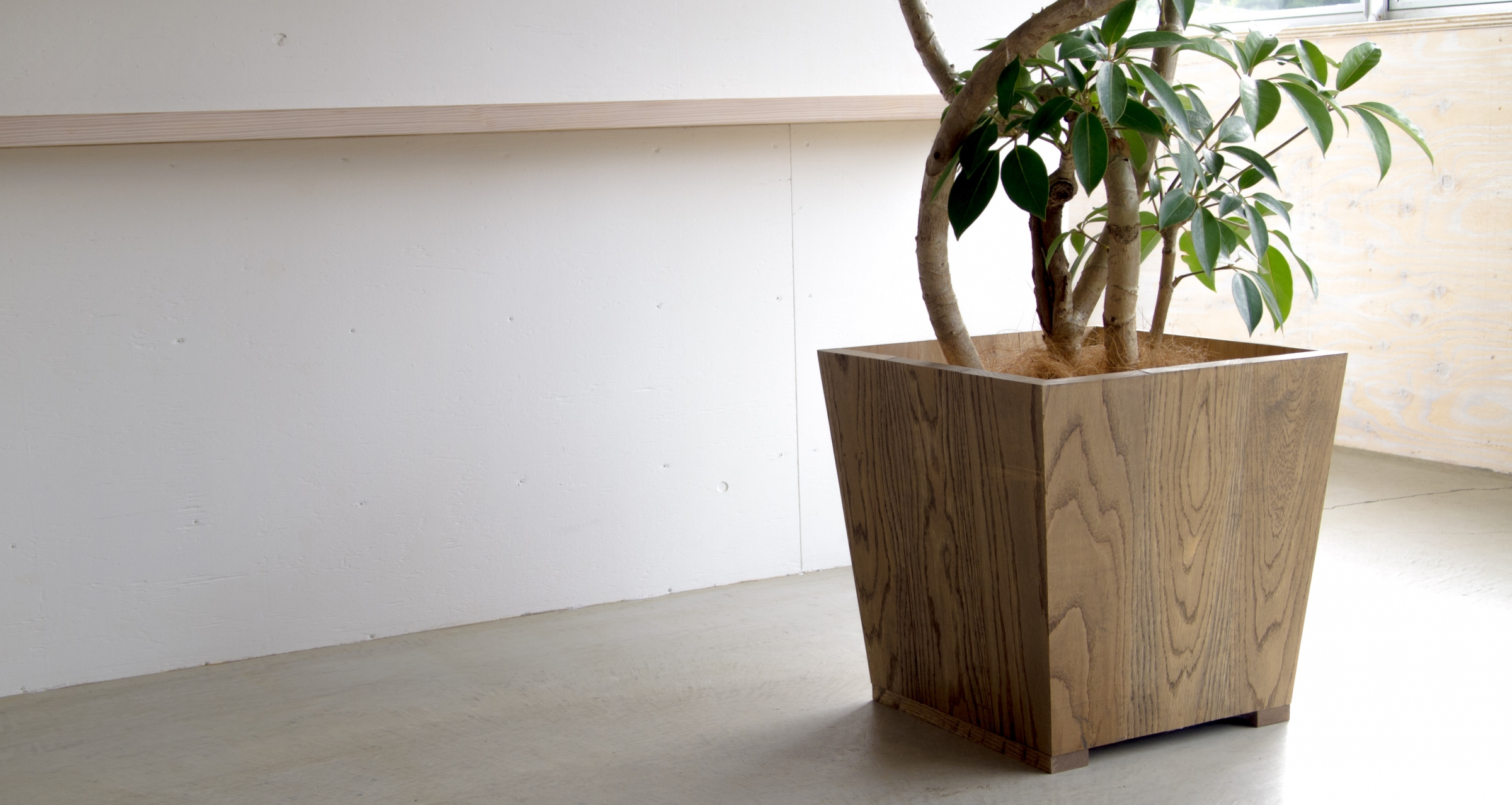 Interior pot / White oak
